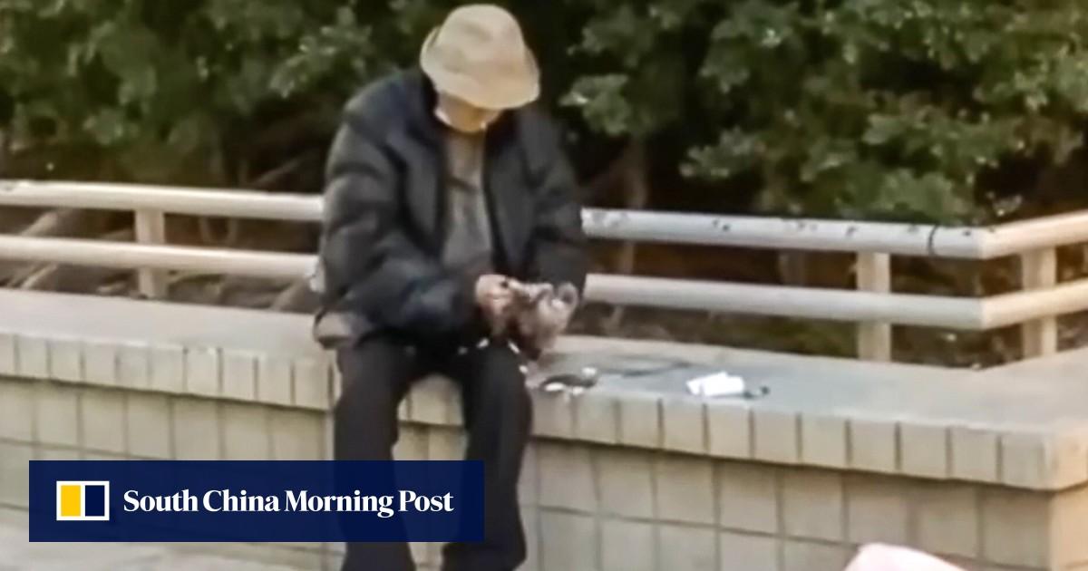 Man arrested after being filmed plucking pigeon at Hong Kong housing estate