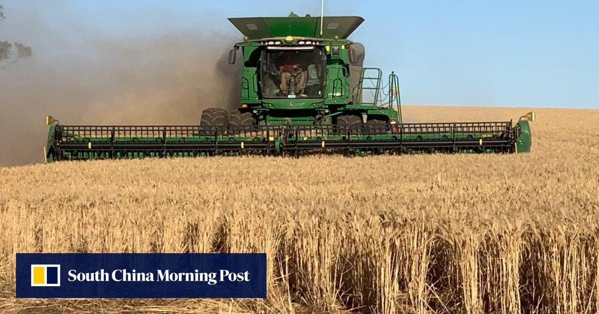 Australian farmers long chased easy profits in China, and now it's costing them