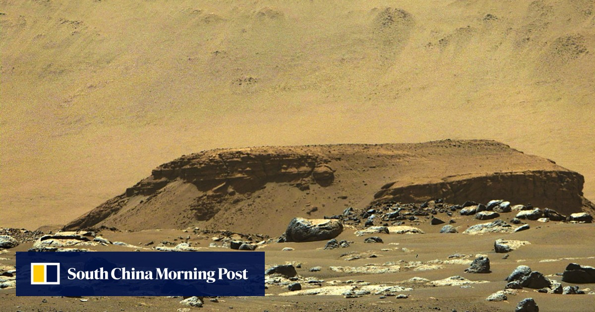 Fungi on Mars? Researchers claim signs of life on red planet