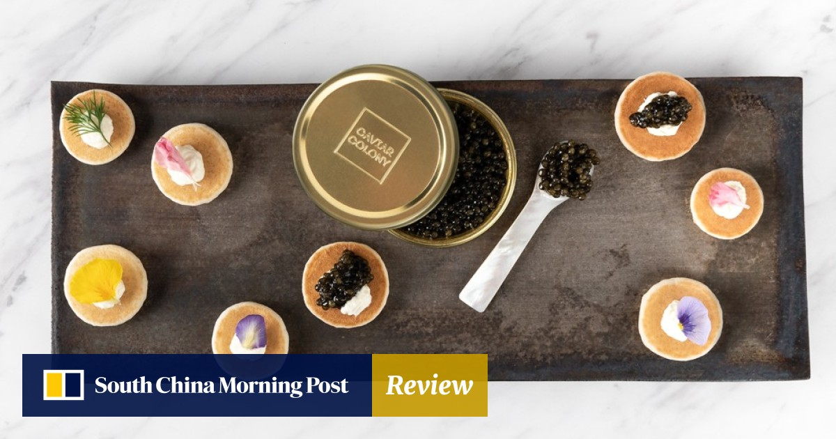 Chinese caviar: the Singapore pair farming 'black gold' in