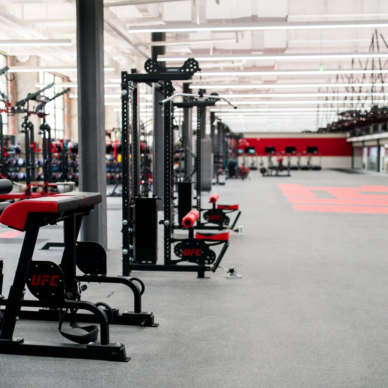 Rose Glen North Dakota ⁓ Try These Ufc Mma Gym Near Me