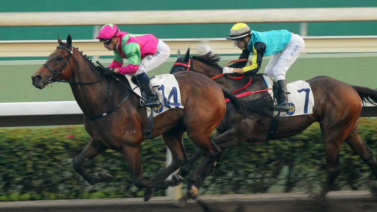 Race 9, Elusive State, ridden by Silvestre de Sousa, beats Raging Blitzkrieg (No. 7) to win the class 2 over 1650m (all weather track) at Sha Tin. 12JAN19