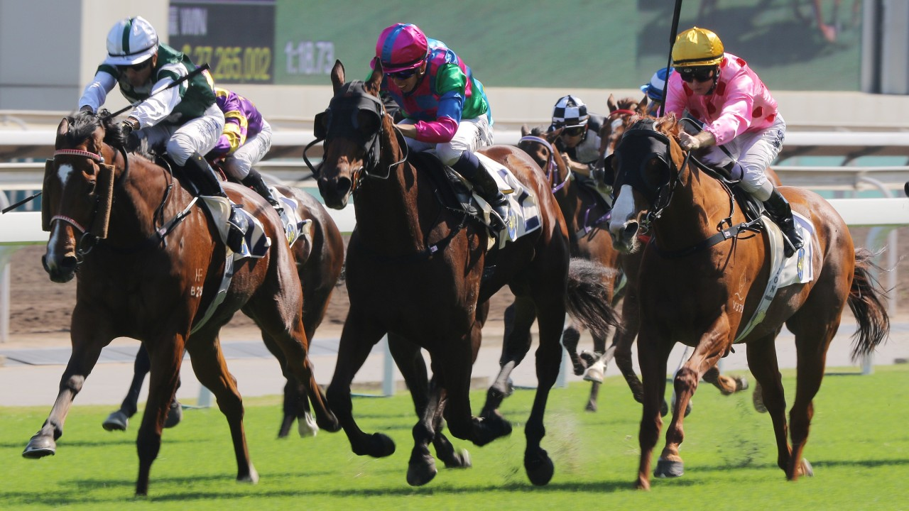 The races go off without a hitch at Sha Tin on Sunday. Photo: Kenneth Chan