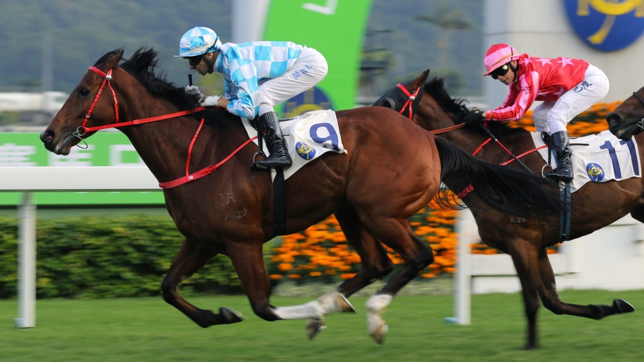 Race 9, Conte(#9), ridden by Joao Moreira, won the Chinese Club Challenge Cup(Group 3, 1400m) at Sha Tin. 01JAN19