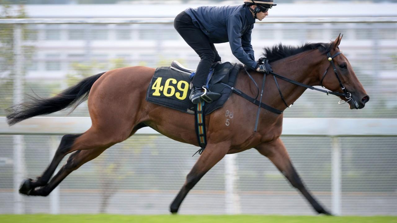 METHANE (469) galloping on the turf at Sha Tin. 14NOV19