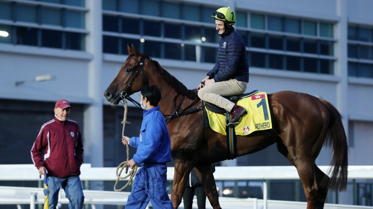 AETHERO going back to stable after gallop on the turf at Sha Tin on 05Dec19. Trainer John Moore looking the horse. 05DEC19