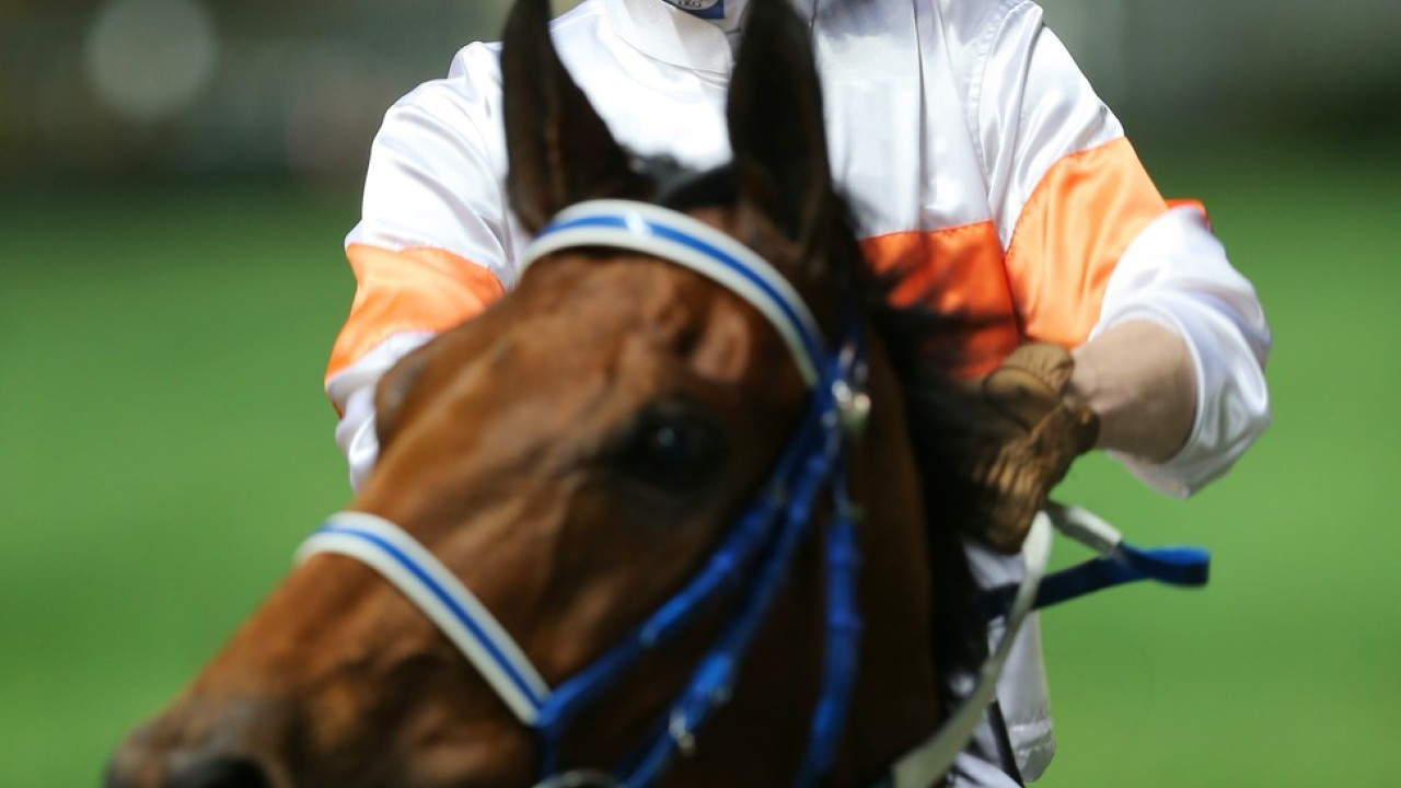 Race 7, Kiram, ridden by Lyle Hewitson, won the class 3 over 1650m at Happy Valley on 22Jan20.