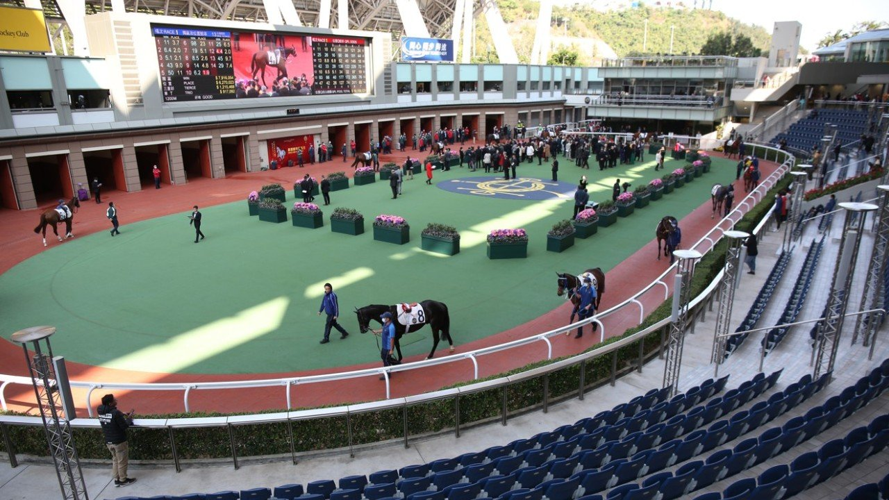 Race 1, Only Racing memberss at Sha Tin race course on 27Jan20.