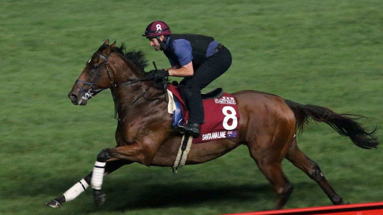 Santa Ana Lane gallops on the turf at Sha Tin.