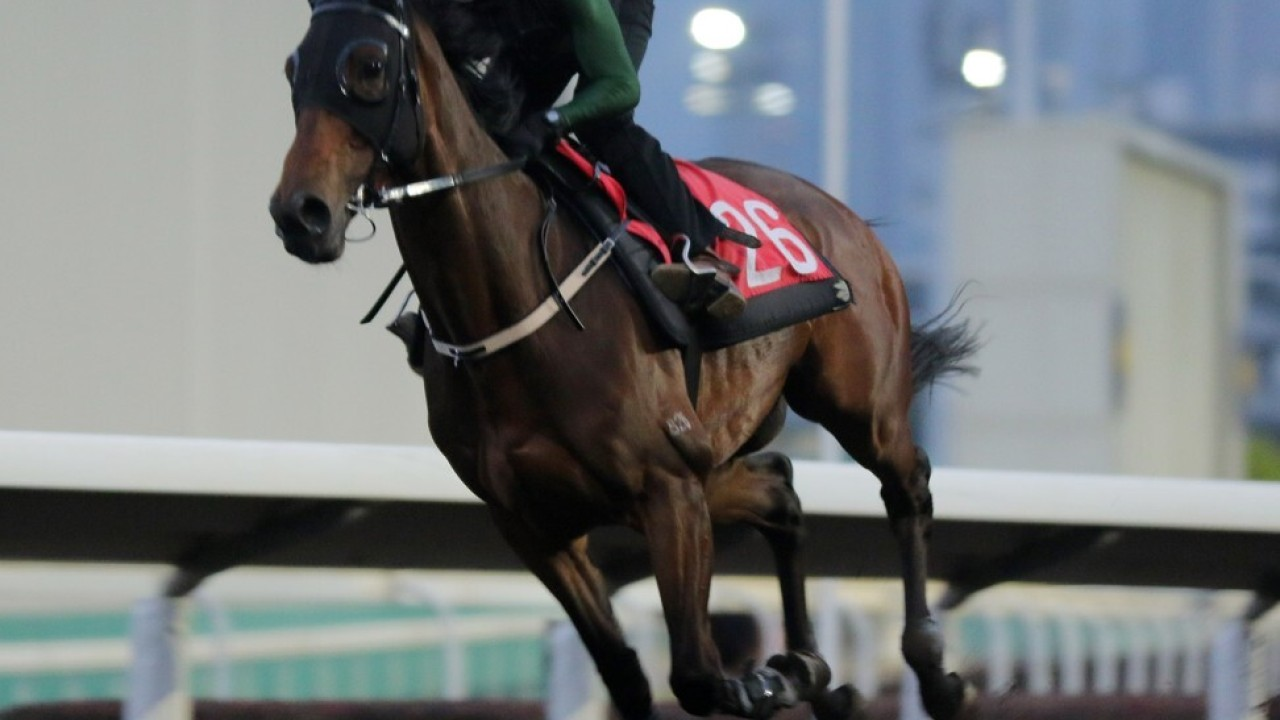 LONDON HALL ridden by Ruan Maia galloping on the all weather track at Sha Tin. 25FEB21 SCMP / Kenneth Chan.