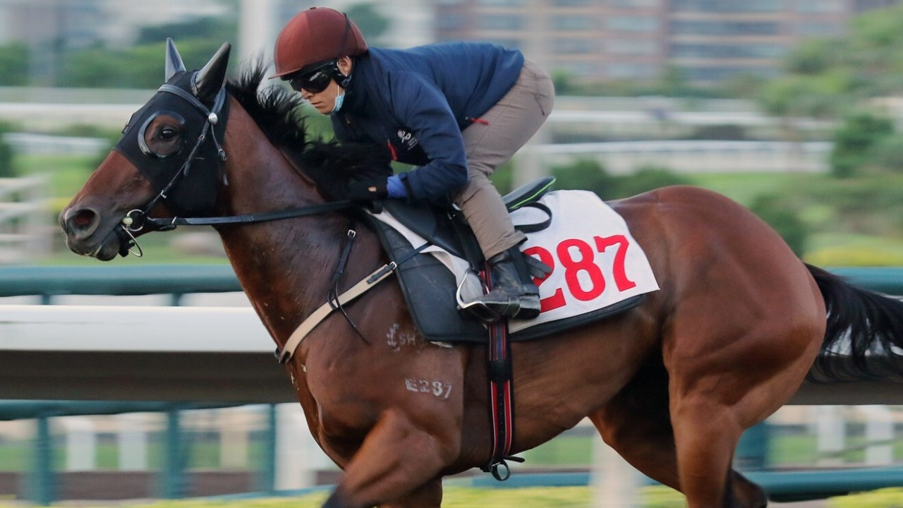 TRADER ridden by Keith Yeung galloping on the all weather track at Sha Tin. 10MAYy21 SCMP / Kenneth Chan.