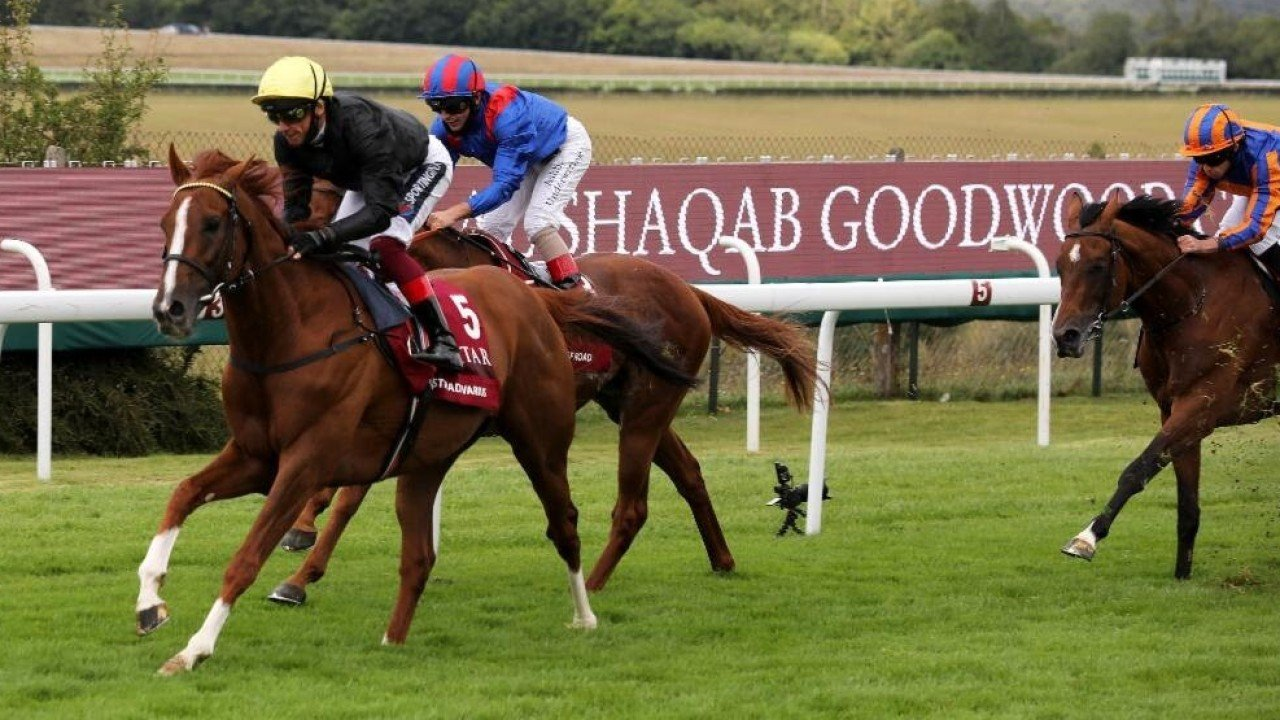 Frankie Dettori pilots Stradivarius home in the 2020 Group One Goodwood Cup. Photo: Handout